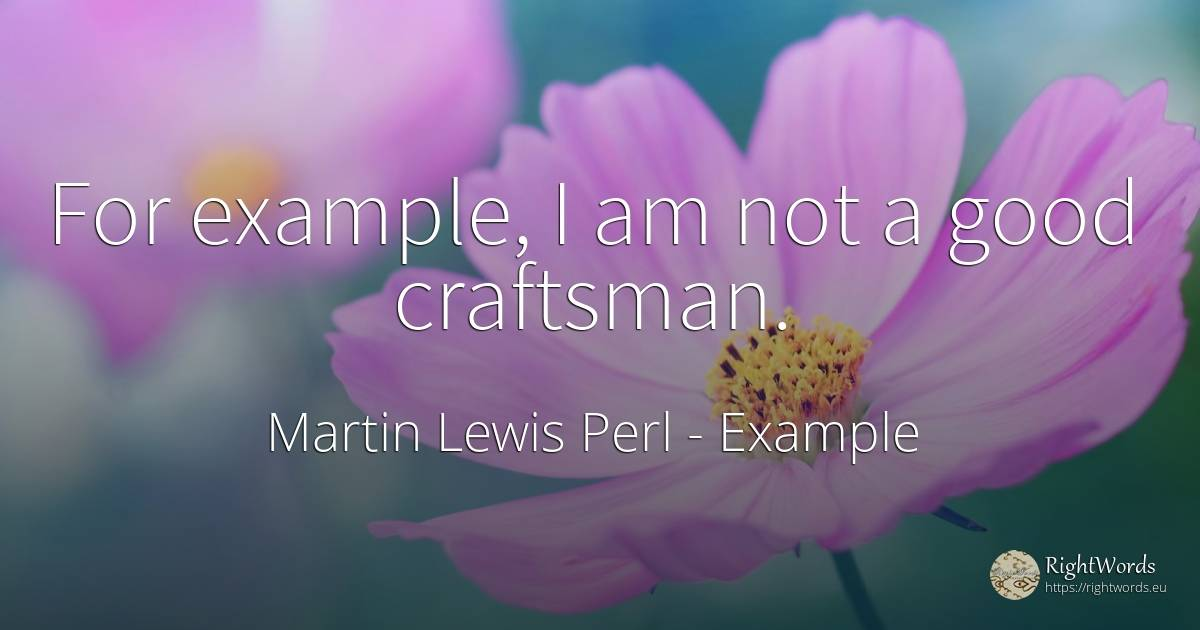 For example, I am not a good craftsman. - Martin Lewis Perl, quote about example, good, good luck