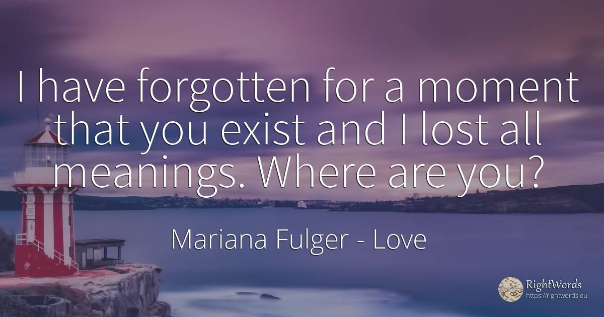 I have forgotten for a moment that you exist and I lost... - Mariana Fulger, quote about love story