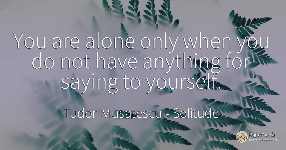 You are alone only when you do not have anything for... - Tudor Musatescu, quote about solitude