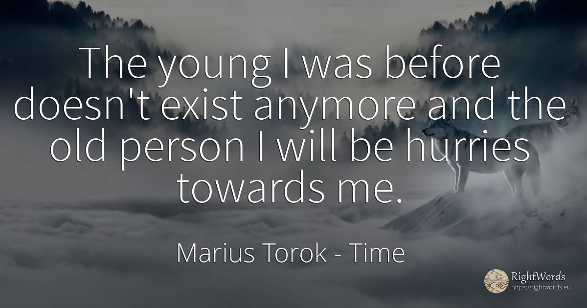 The young I was before doesn't exist anymore and the old... - Marius Torok, quote about time, old, man