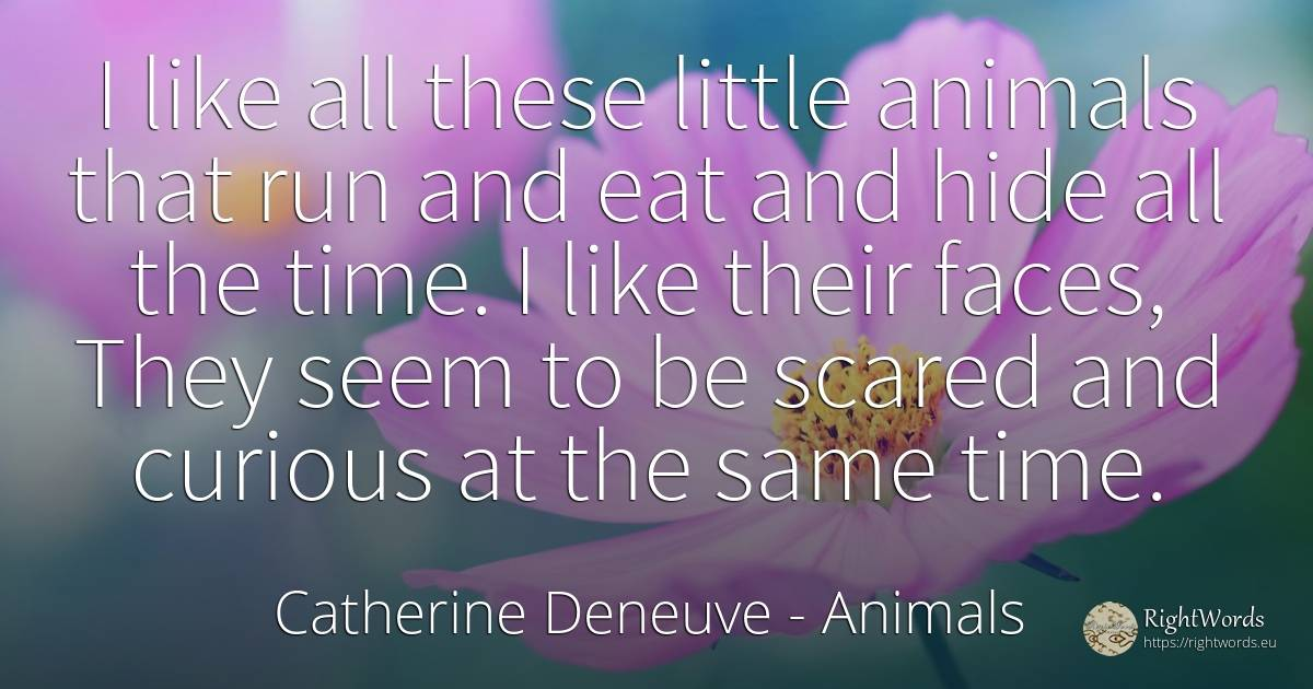 I like all these little animals that run and eat and hide... - Catherine Deneuve, quote about animals, time